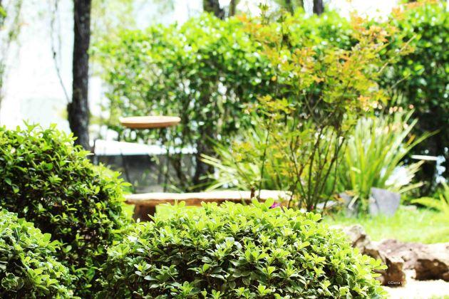 Jardim casa Elo Teixeira (11)_editado-1